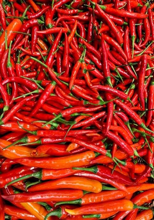 6 tipos de pimentas para cultivar e apimentar a comida