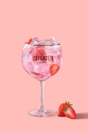 Vem aprender 4 receitas fáceis de drinks com gin