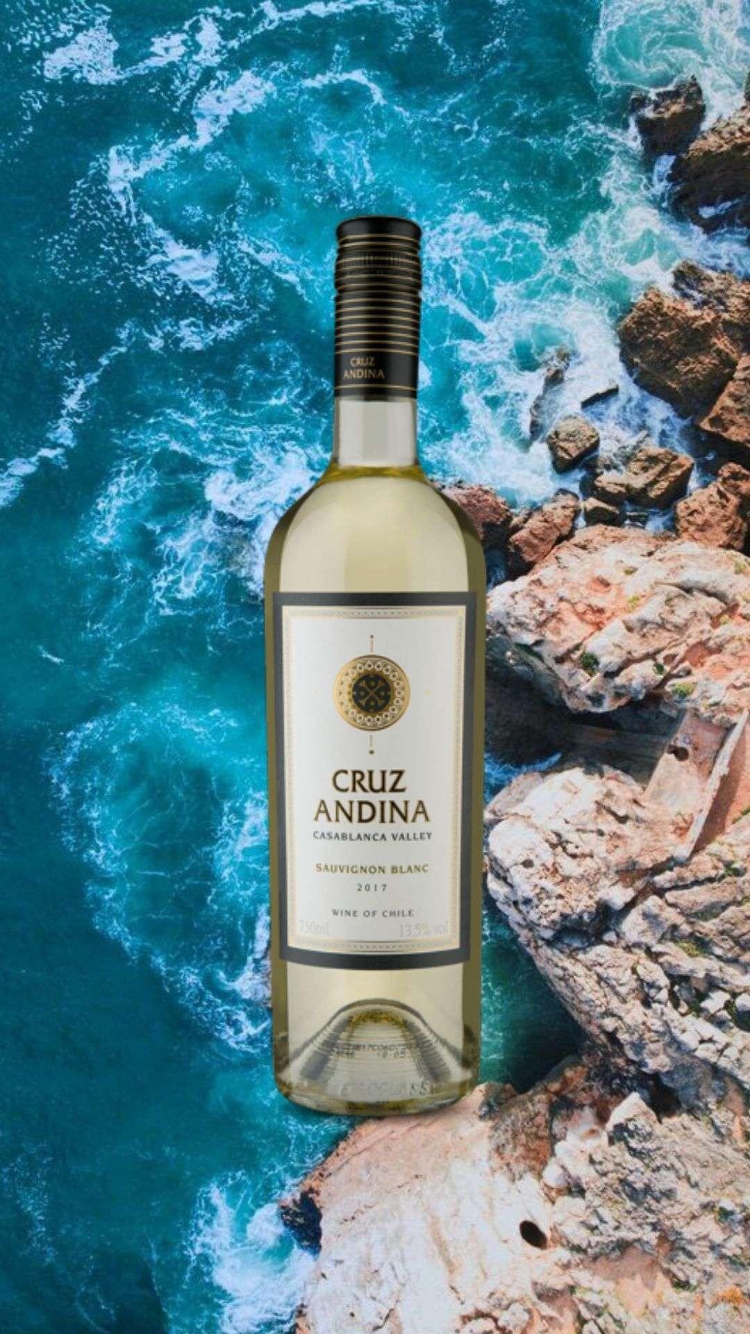 Cruz Andina Reserva Sauvignon Blanc