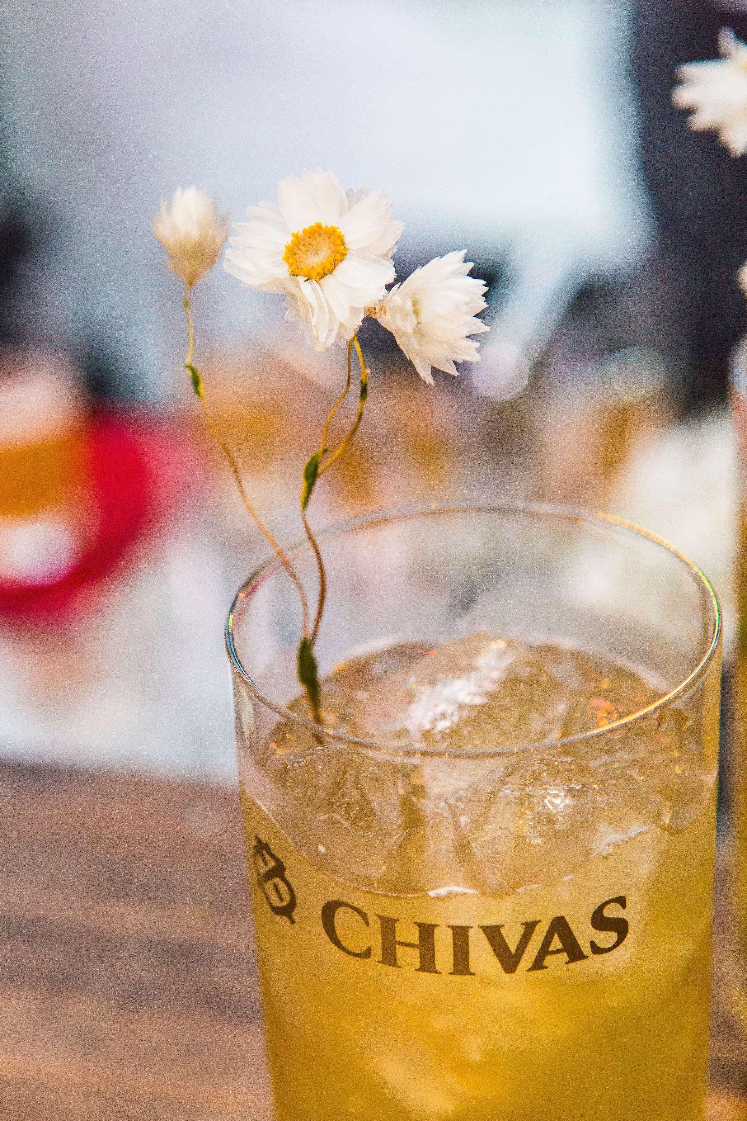 O drink da combinação infalível: Chivas Highball