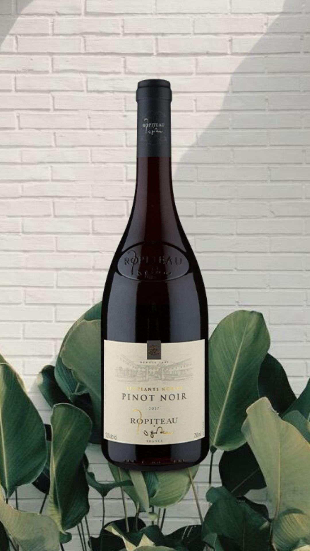 Ropiteau Frères Les Plants Nobles Pinot Noir 2017
