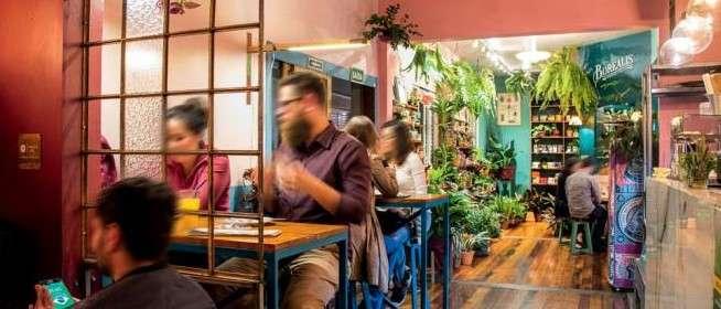 Botanique Café Bar Plantas em Curitiba | Shareeat