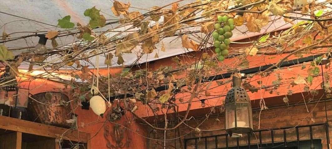 Vinum Est - A Cultura do Vinho em São Paulo   Shareeat